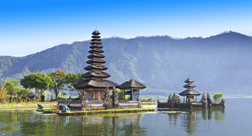 Ship car to Bali: Terminology and Rates