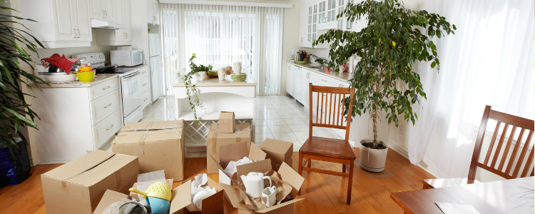 learn more about Bessemer, Alabama same day moving service