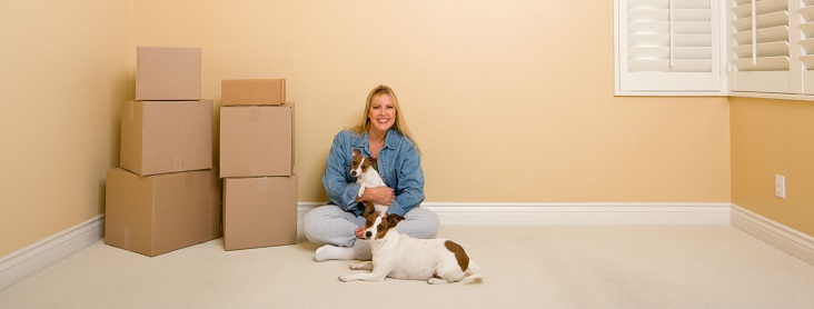 long distance interstate moving companies in Andover