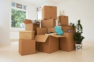 Cheap Movers In Burbank