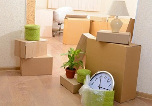 Cheap Movers In Canton